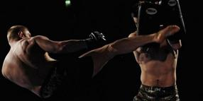 20090607-Wisp-Fighting.jpg