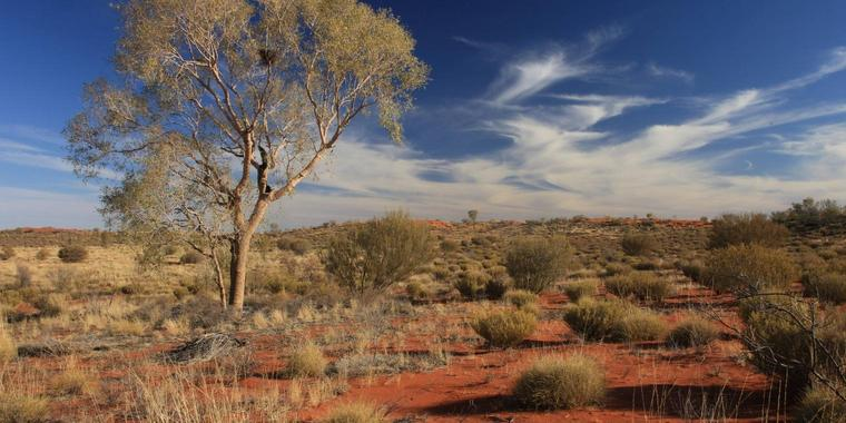 Das Outback im Northern Territory in Australien.